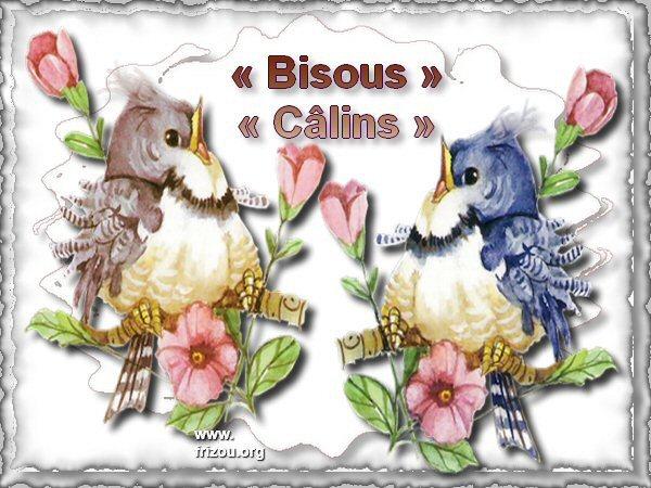 citation image 30bisousc-lins9-34fdba0