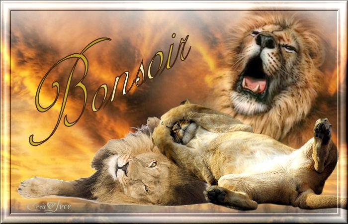 Bon LUNDI SOIR, bisous 389205bonsoirlions-34f6f5a